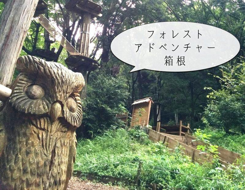 フォレストアドベンチャー箱根 キャノピーコースを体験してきました。