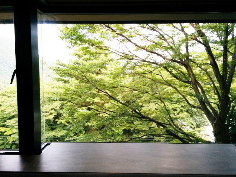 箱根ゆとわ 窓から