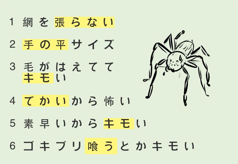 アシダカグモ でかい、毛が生えててキモい、素早いからキモい、ゴキブリ喰うとかキモい