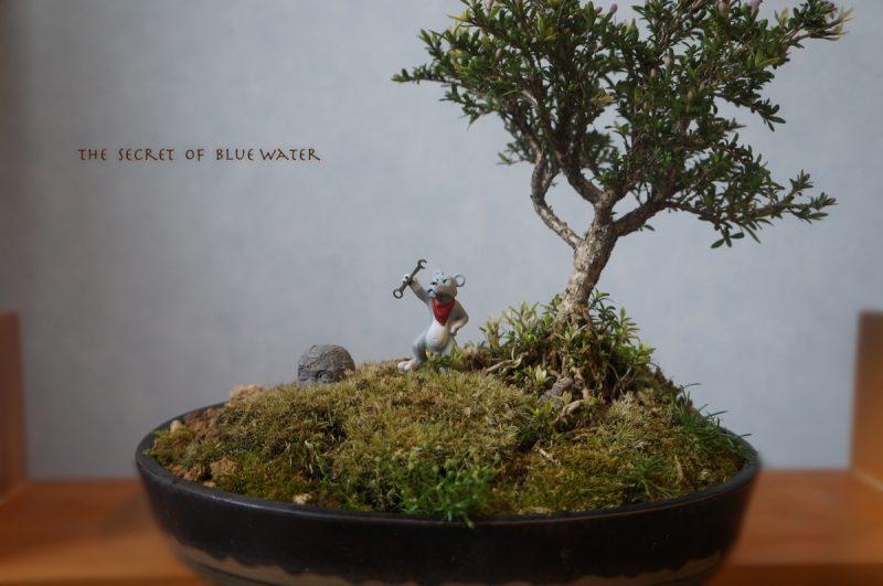 ふしぎの海のナディア 島編キングと盆栽