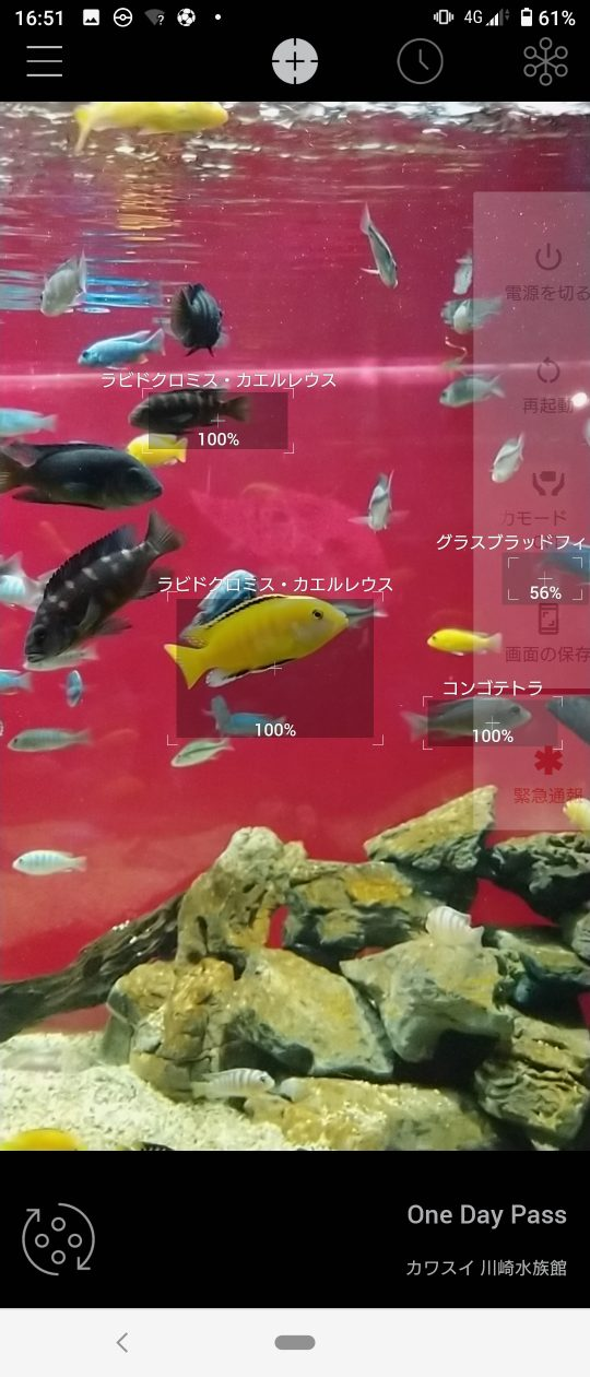 カワスイ 川崎水族館 アプリ「リンネレンズ」をインストールしておけばより楽しく便利